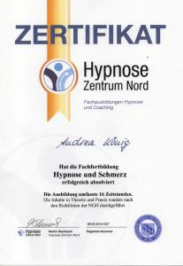 Zertifikat Hypnose und Schmerz