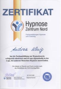 Zertifikat Hypnotiseurin